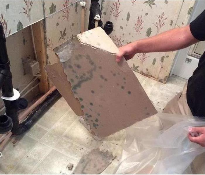 Before Mold Remediation...
