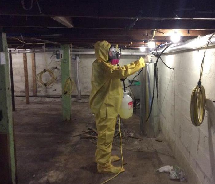 Safety is #1 When it comes to Mold Cleanup