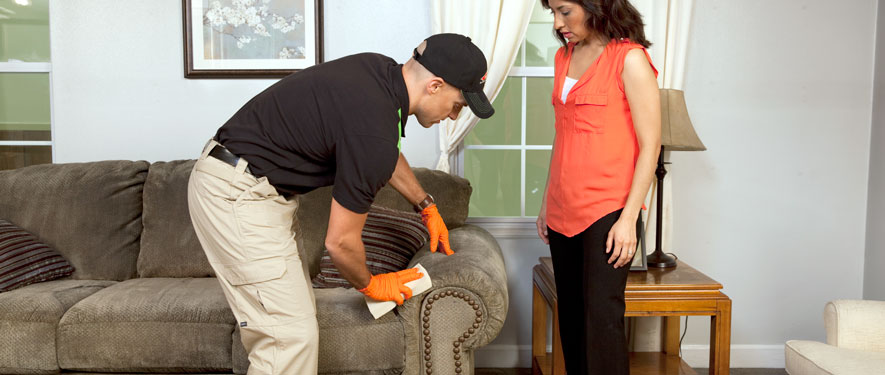 Big Rapids, MI carpet upholstery cleaning