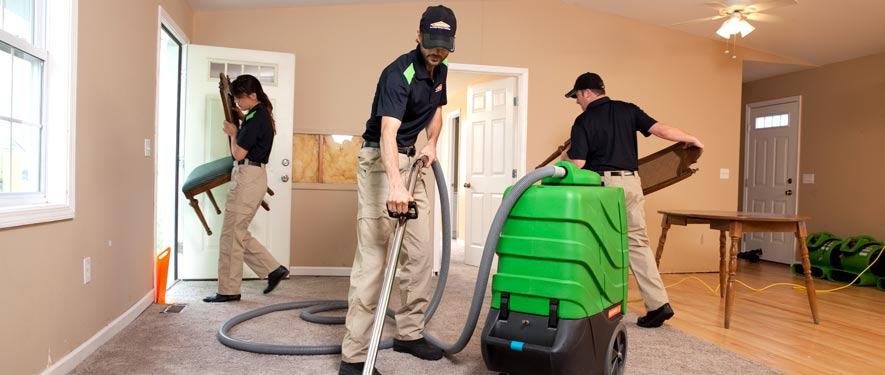 Big Rapids, MI cleaning services